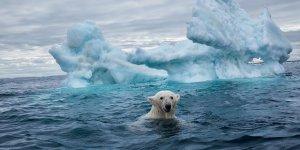 İklim Değişikliğiyle Mücadelede Radikal Yöntemler Denenecek