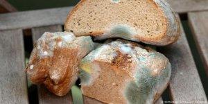 Her Yıl 400 Bin Kişi Bozuk Gıda Nedeniyle Ölüyor