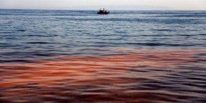 'Marmara Denizi Alarm Veriyor'