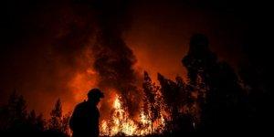 Portekiz'de Binden Fazla Kişi Orman Yangınını Söndürmeye Uğraşıyor