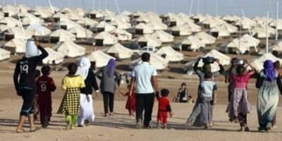 ''Bu Yıl 80 Bin Kaçak Göçmeni Sınır Dışı Edeceğiz''