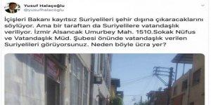 Cahil Prof'un Desteksiz Atışı ve Yalana Bayılan Binlerce Takipçisi