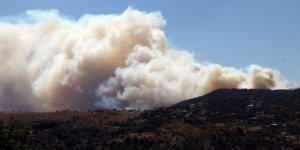 Ege'de 4 İlçede Orman Yangını