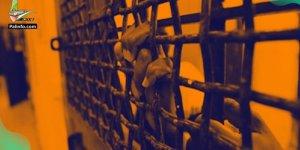 Oslo Anlaşması'ndan Bu Yana 120 Binden Fazla Filistinli Gözaltına Alındı