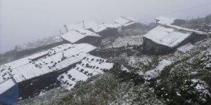 Rize'de Mevsimin İlk Karı Yağdı
