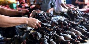 Çin'de Vahşi Hayvan Pazarları Yeniden Açıldı