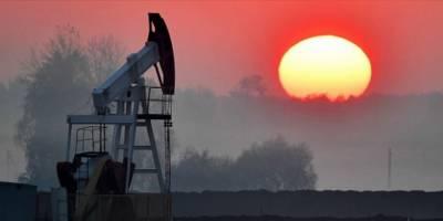 Petrol İhraç Eden Ülkeler Üretimi Düşürecek