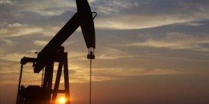Petrol Fiyatlarındaki Çöküş Mısır ve Pakistan'ı da Sarsıyor