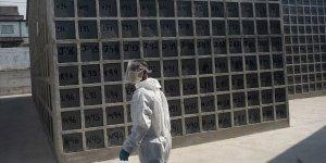 Brezilya'da Son 24 Saatte Kovid-19 Nedeniyle 612 Kişi Öldü