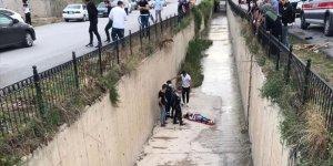 Amasya'da Başıboş Köpeklerin Saldırısına Uğrayan Genç Kız Kanala Düştü
