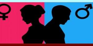 Hollanda Kimliklerde Cinsiyet Bilgisini Kaldırıyor