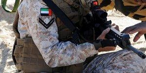 Birleşik Arap Emirlikleri ordusu: Bir envanter analizi