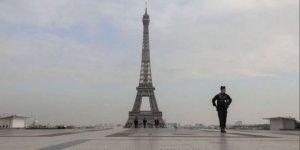 Olimpiyatların düzenleneceği medeni şehir Paris'te fare endişesi!