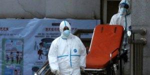 DSÖ: Avrupa'da ölümler 5 kat artabilir