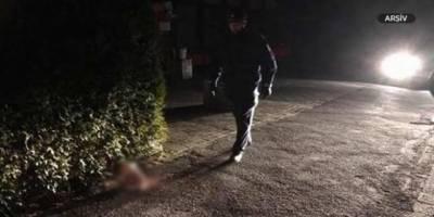 Fransa'da bir camiye domuz kafası bırakıldı