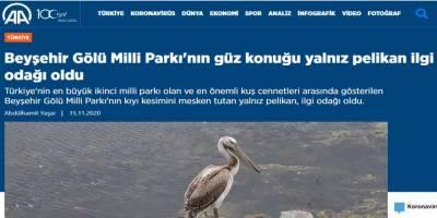 AA'nın 'Pelikan' haberi gündem oldu
