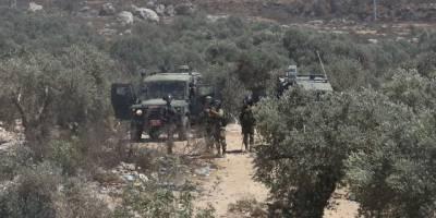 Yahudi işgalciler Filistinlilere ait zeytin ağaçlarını itlaf etti
