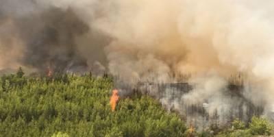 Bakan Pakdemirli: 101 yangından 91'ini kontrol altına aldık
