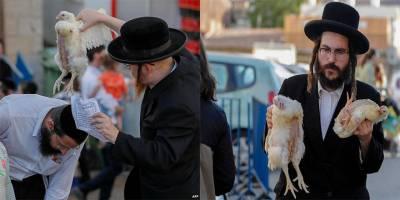 Yahudiler günahlarını tavuklara yüklemeye devam ediyor!