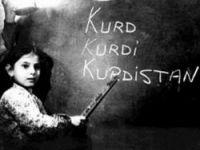 """""""Kürdistan Talebi"""" İfade Özgürlüğü Kapsamında"""