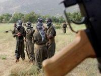 PKKdan Yanıt: Nevruzda Kesin Ateşkes