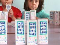 80 Öğrenci Süt Nedeniyle Rahatsızlandı