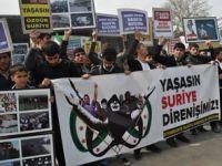 Suriye Direnişi Diyarbakırdan Selamlandı