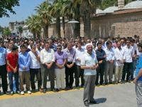 Gebze'den Mısır Halkına Destek Eylemi