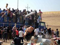 Müslüman Alimler Birliği'nden Suriye Çağrısı
