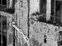 AF Örgütü: Irak'ta 50 Tutuklu İnfaz Edildi