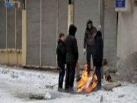 BDP'nin Çağrısıyla Kepenkler Açıldı