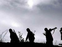 Şırnak'ta 5 PKK Militanı Güvenlik Güçlerine Teslim Oldu