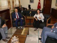Yalçın Akdoğan: Öcalan'ın Mesajı Tahrik Etti