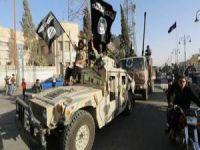 Hollanda'da Gençlerin 'IŞİD'e Desteği' Tartışması