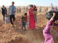Reyhanlı'nın Yüzde 38'i Suriyeli