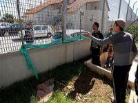 Filistinli Aile Siyonist Yerleşimcilere Direniyor (FOTO)