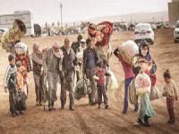 Irak'ta ABD Saldırıları, Şii Katliamları ve Göç Dramı
