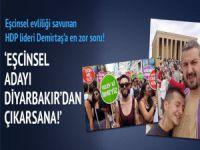 """""""Demirtaş, Eşcinsel Adayını Diyarbakır'dan Aday Göstersene!"""""""