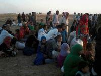 Sığınmacılar Sırbistan Sınırında Açlık Grevine Başladı