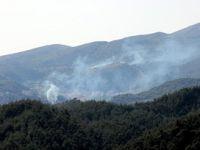 Esed Güçleri Türkmen Köyüne Saldırdı