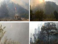 Rejimin Bombaladığı Türkmen Dağında Yangın