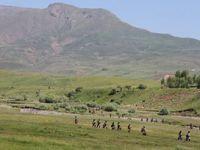 PKK Kamplarından Kaçan 8 Kişi Teslim Oldu