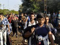3 Bin Göçmen Viyana'ya Geçti