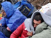 Sığınmacılar Soğutuculu Kamyonda Ölümden Döndü