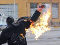 Devrimci/Demokratik Şiddet