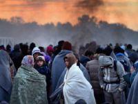 """""""Yeni Mülteci Sözleşmesini Müslümanlar Yazmalı"""""""
