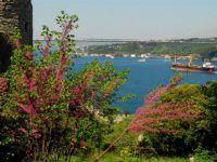 Eski İstanbul Daha mı Yeşildi?