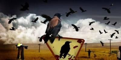 Siyaset ve Diplomasiyi İktidarsızlıktan Kurtarabilmek