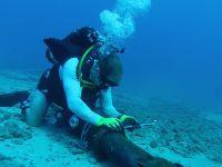 Atlas Okyanusu'na İnternet Kablosu Çekilecek