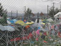 Midilli Belediye Başkanı Galinos: Avrupa'da Gerçek Tehlike Faşizmdir